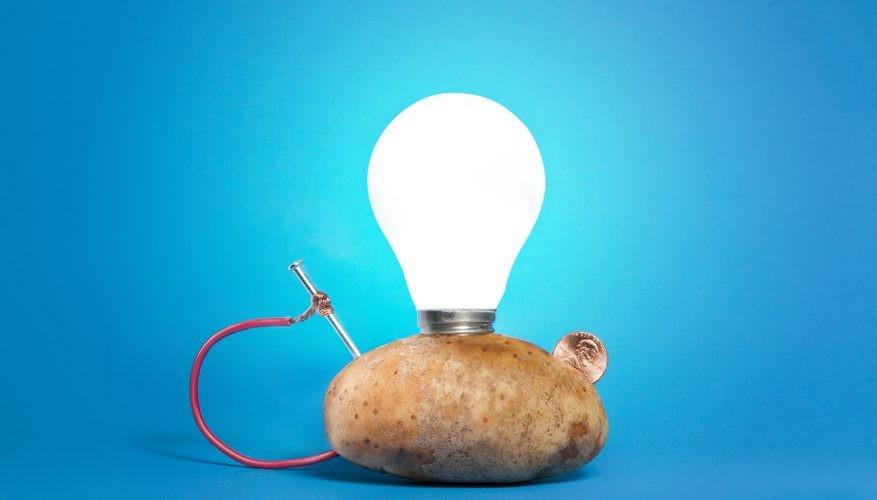 Bagaimana Kentang Bisa Menjadi Energi Alternatif